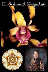 In Memoriam: Prof. Iwan Dwiprahasto